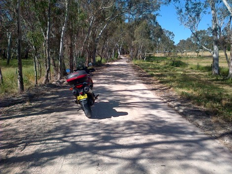 It really is nice to get off the main roads and enjoy the bush.