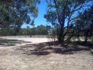 Parking area at the Jupiter Creek Diggings